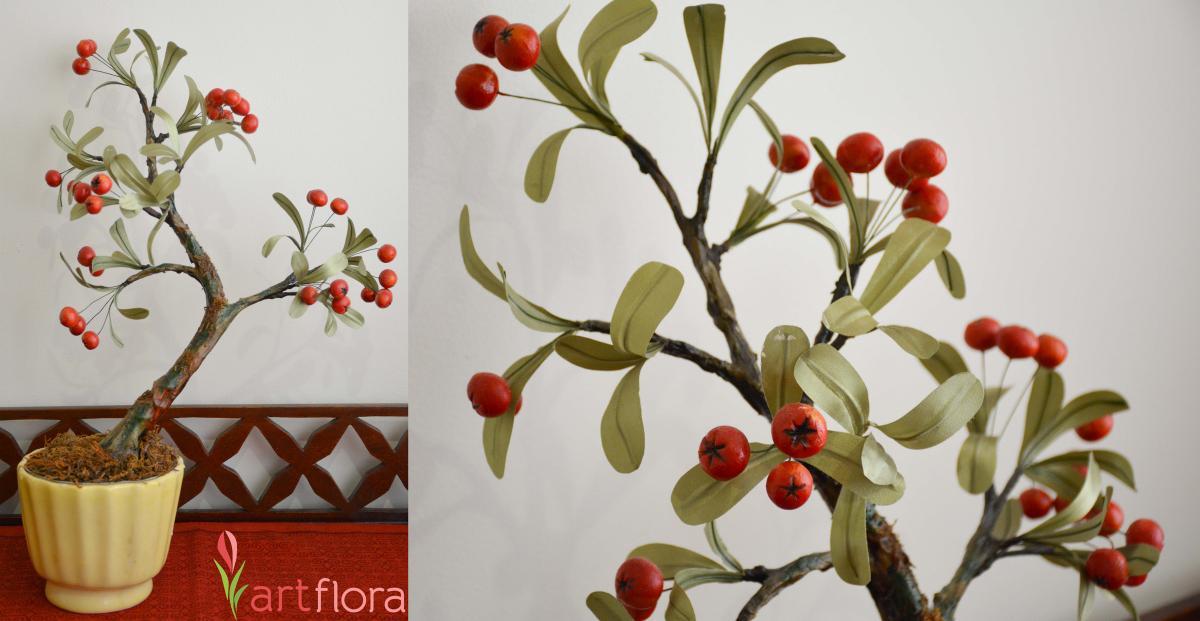 Cherry Tomato Fruit Bonsai Tree